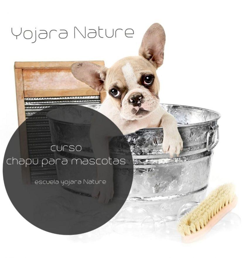 curso cosmetica natural, curso champu para mascotas
