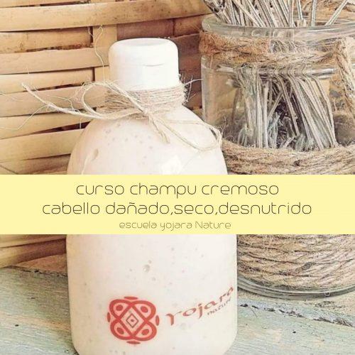 curso cosmetica natural, curso champu cremoso