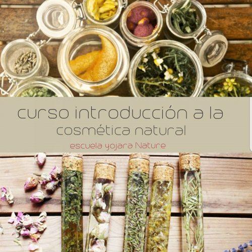 curso cosmetica natural, curso introduccion a la cosmetica natural