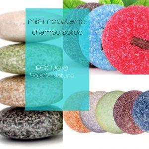 Curso cosmetica natural, minirecetario de champu solido