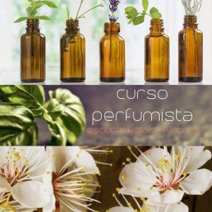 Curso perfumista